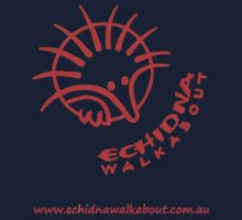 Echidna Walkabout logo Orange by Echidna  Walkabout