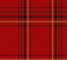 02687 Taplin Tartan Fabric Print Iphone Case by Detnecs2013