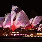 Subtle Colours of Vivid 2013 by Michael Matthews