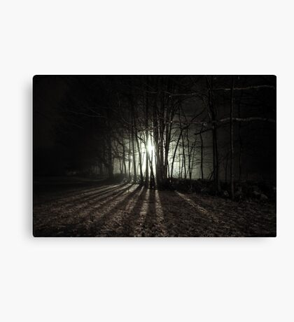 Nocturnal Luminescence Canvas Print
