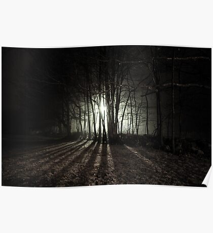 Nocturnal Luminescence Poster
