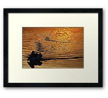 """""""on golden pond"""" - well, St Helens bay.... Framed Print"""