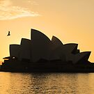 Sunrise In Sydney by Kezzarama