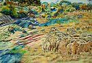 Sheep In the Creek - Dumbleyung by scallyart