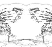 2 Flying Fish Sticker