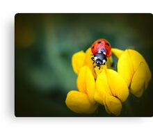 ... And the livin' is easy... Canvas Print