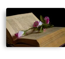 book and rose Canvas Print