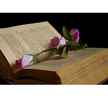 book and rose Photographic Print