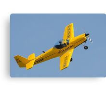 slingsby firefly Canvas Print