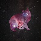 Nebula Kitty by crashin
