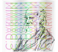 Charles Darwin Coloured Poster