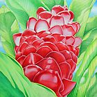 Red Ginger Watercolour by joeyartist