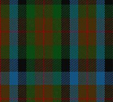 02702 Tennant #2 Clan/Family Tartan Fabric Print Iphone Case by Detnecs2013