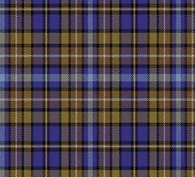 02707 Dutchess County, New York E-fficial Fashion Tartan Fabric Print Iphone Case by Detnecs2013