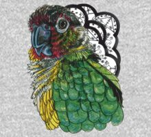 Green Cheeked Conure by Ashley Peppenger