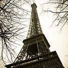 Paris Eiffel Tower by bungeecow