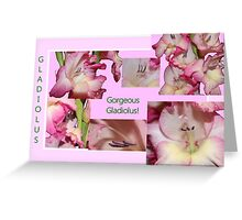 Gorgeous Gladiolus! Greeting Card