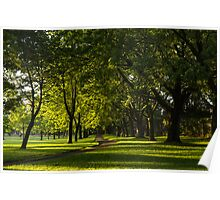 Sunny August Afternoon in the Park Poster