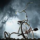 Storm Rider by Mick Kupresanin