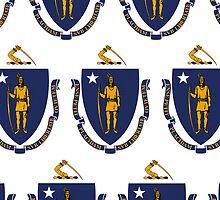 Smartphone Case - State Flag of Massachusetts - Horizontal II by Mark Podger