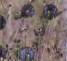 Dandelion Blue by leapdaybride
