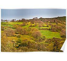 Springtime landscape in Crete Poster
