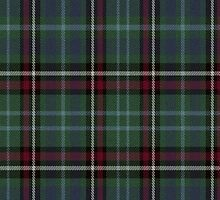 02717 Spartanburg County, South Carolina E-fficial Fashion Tartan Fabric Print Iphone Case by Detnecs2013