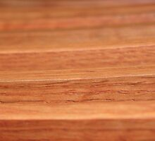 Wood Lines by Henrik Lehnerer
