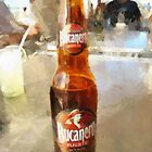 A liquid lunch... by buttonpresser