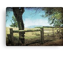 Kohala Ranch Canvas Print
