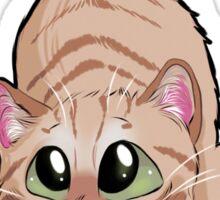 Chibi Red Cat Sticker
