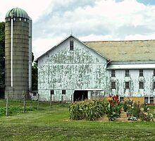 Country Barn by Pamela Shane