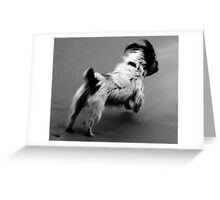 Running For A Ball Greeting Card