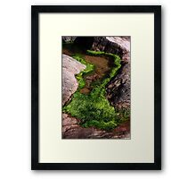 Rock Pool Framed Print