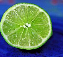 Lime! by aprilann