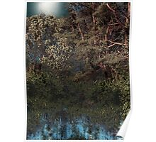 Hanging Garden in Moonlight Poster