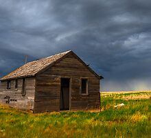 Old House on the Plains by Reese Ferrier