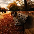 Lonely Bench by redhairedgirl