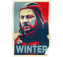 Ned Stark - Winter Is Coming Poster