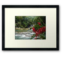 Jamaican Waterfall  Framed Print