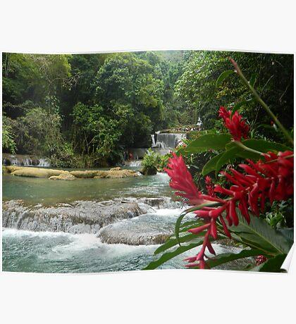 Jamaican Waterfall  Poster