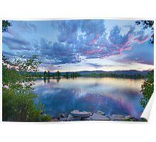 Coot Lake View Poster
