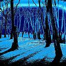 Blue Moon Light by David Schroeder