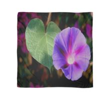Beautiful Single Morning Glory Flower and Leaf Scarf