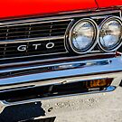 GTO by Jeannie Peters