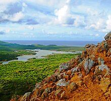 Scenic View by emilyduwan