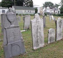 Lansingburgh Village Burial Ground by Stephanie Fay