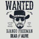 Django Wanted by AJ Paglia