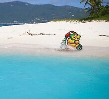 Bowser on the Beach by saboe