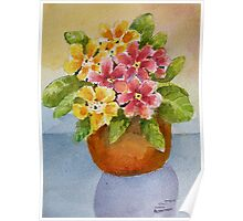 Polyanthus watercolour painting Poster